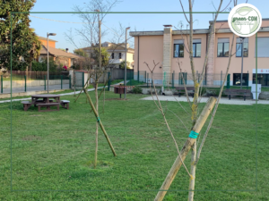Nuove panchine e tavoli per il parco della scuola elementare