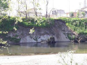 AIPO inizia i lavori sulle sponde del fiume