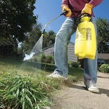 Il diserbo spazzerà via tutte le erbacce