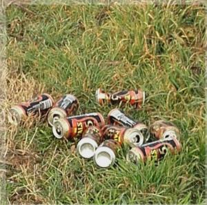 La spazzatura si butta nel cestino