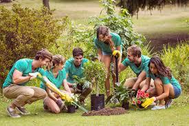 BANDO LEVA CIVICA VOLONTARIA REGIONALE-Cercasi n.1 volontario per servizi sociali e ambientali