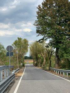 Al più presto un progetto per la riqualificazione del  Ponte