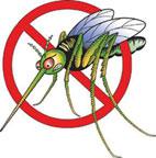 zanzara-2_2764_2605